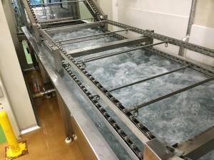 連続洗浄殺菌装置(WS-3600)